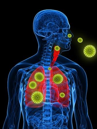 Pollen Entering the lungs through the nose